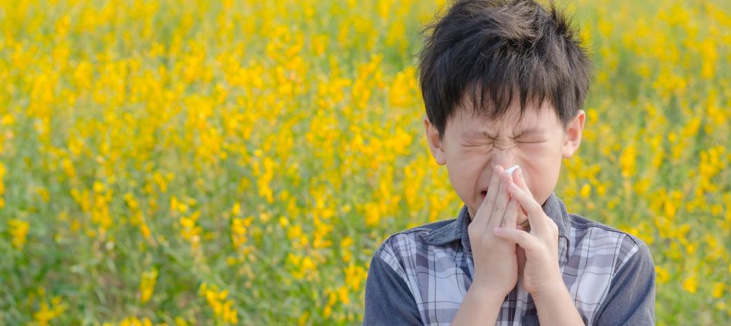Les allergies du printemps